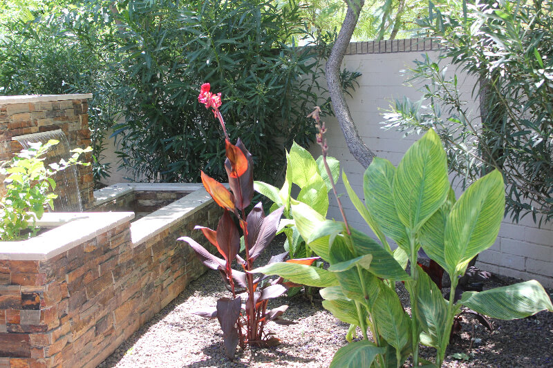 Side view of multicolored textured fountain and flora, by New Image, the best landscapers in Mesa, AZ