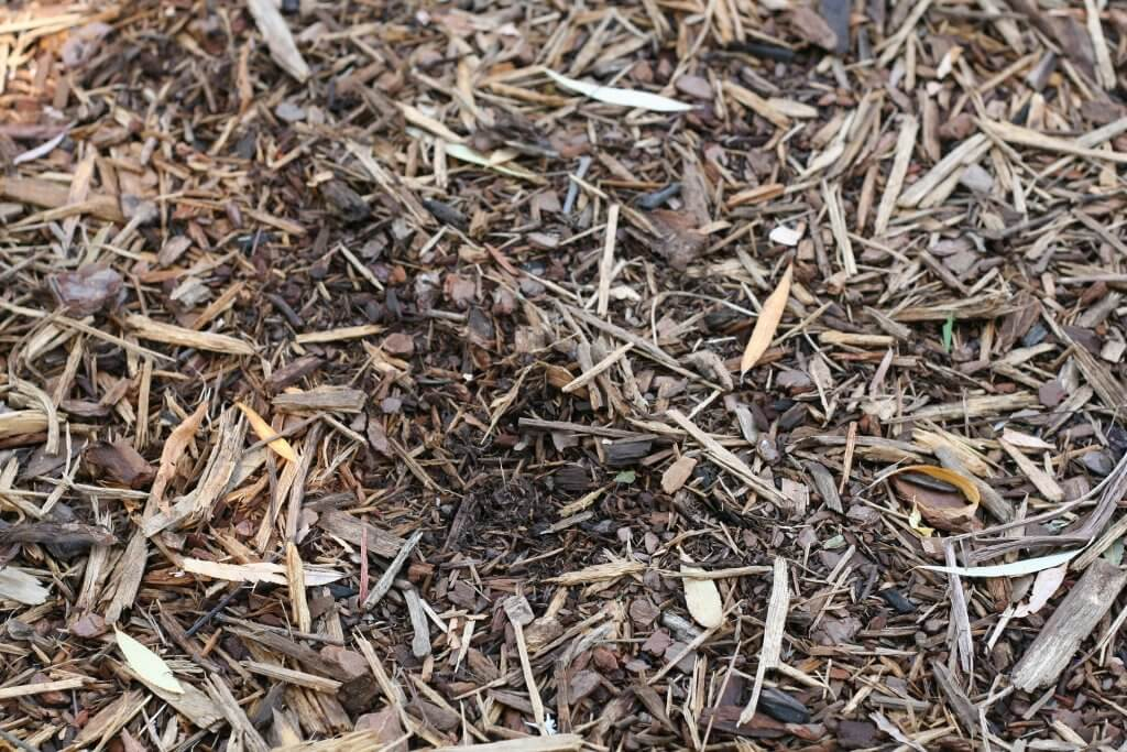 Wood chips - an aesthetic addition that can make any Phoenix landscape just that much better.