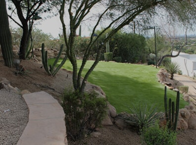 the result of our landscaping in mesa az