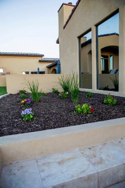 Grow a beautiful Arizona desert landscape with fertilizer
