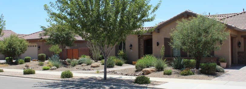 landscape Scottsdale Arizona