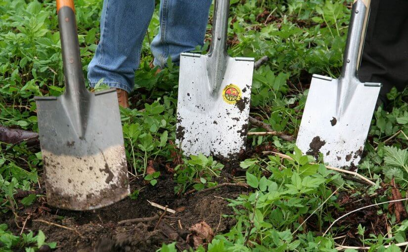 5 Ways to Make Yard Work Easier