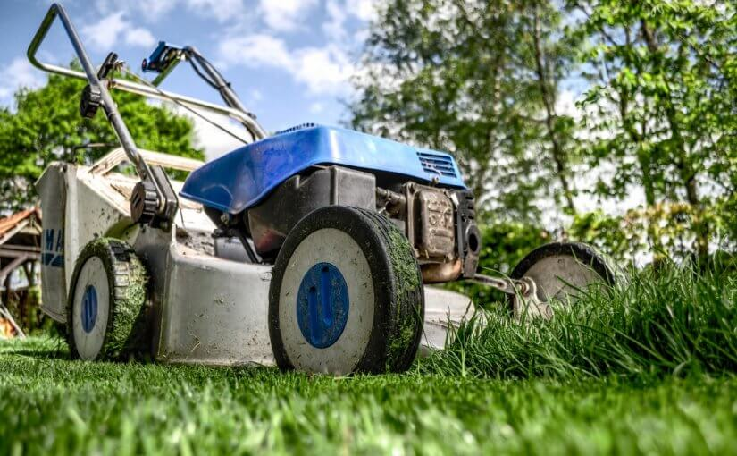 It's Time to Prep Your Winter Lawn