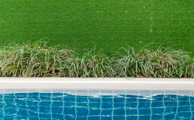 Keeping a Healthy Lawn Through the Winter