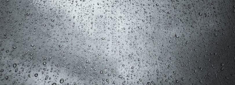 Take advantage of the rain this Arizona monsoon season